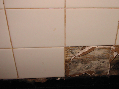 Mold Removal Sacramento Mold Removal House Mold Removal Black - Mold behind drywall in bathroom